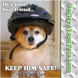 Safety4YourPets.com