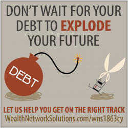 Wealth Network Solutions - WNS1863CY